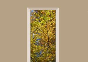Deursticker herfst bladeren