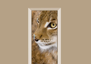 Deursticker lynx
