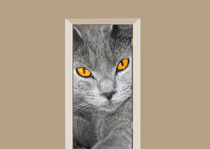 Deursticker grijze kat
