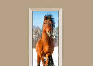 Deursticker paard