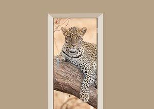 Deursticker luipaard in de safari
