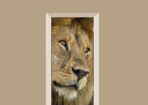 Deursticker leeuw close up