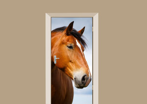 Deursticker paard bruin