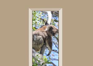 Deursticker koala beer
