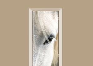 Deursticker paard close up wit