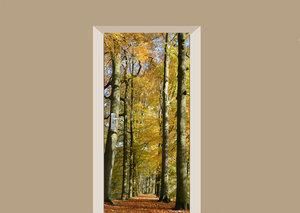 Deursticker herfst in het bos