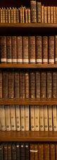 SALE: Muursticker boekenkast 60x205cm (BxL)