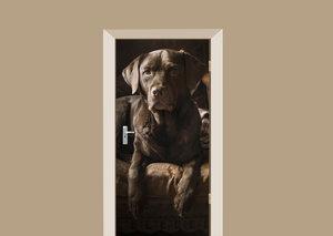Deursticker bruine labrador