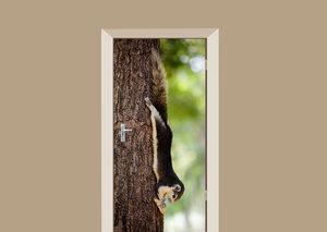 Deursticker eekhoorn met pinda