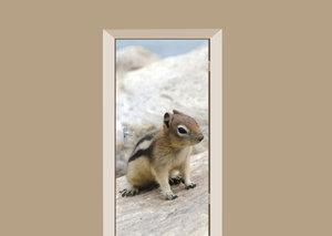 Deursticker eekhoorntje