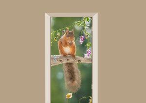 Deursticker eekhoorn op tak