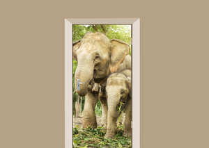 Deursticker olifant met jong