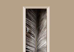 Deursticker struisvogel veer