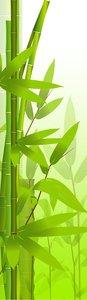 SALE: Muursticker/deursticker bamboetak 50x205cm (BxL)