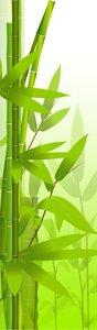 SALE: Muursticker/deursticker bamboetak 55x170cm (BxL)
