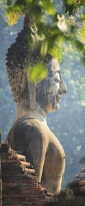 SALE: Muursticker Boeddha in de natuur 65x165cm (BxL)
