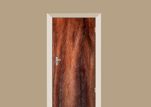deursticker dierenprint nertsenbont