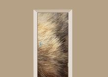 deursticker dierenprint kattenvacht